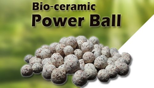 Power Ball2 500x287 - Greenosis Bio-Ceramic Power Ball