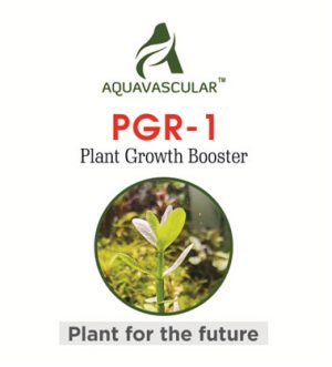 AquaVascular PGR1