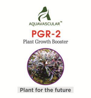 AquaVascular PGR2