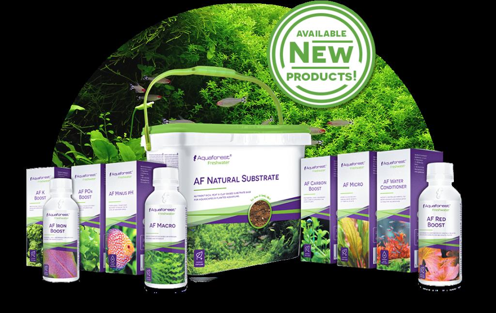 AquaForest | Fresh Water