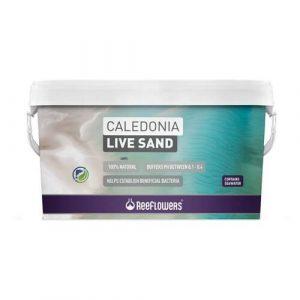 ReeFlowers Caledonia Live Sand | 18kg