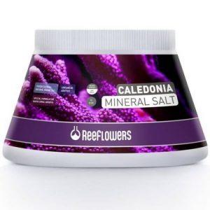 ReeFlowers Caledonia Mineral Salt | 500ml