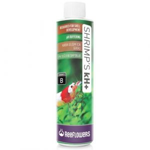 ReeFlowers Shrimps kH+ | 85ml