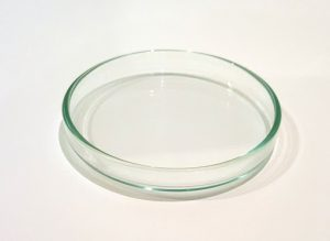 Shrimp Feeding Dish (Glass) - 10cm(L)