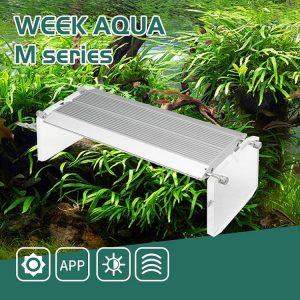 WEEK AQUA M Pro Series LED