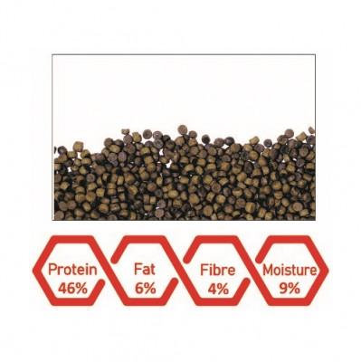 WA Flowerhorn Stomach Cleansing Feed | 100ml – 45g