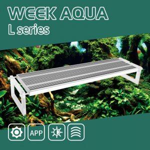 WEEK Aqua L Pro Series