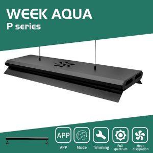 WEEK AQUA P Pro Series
